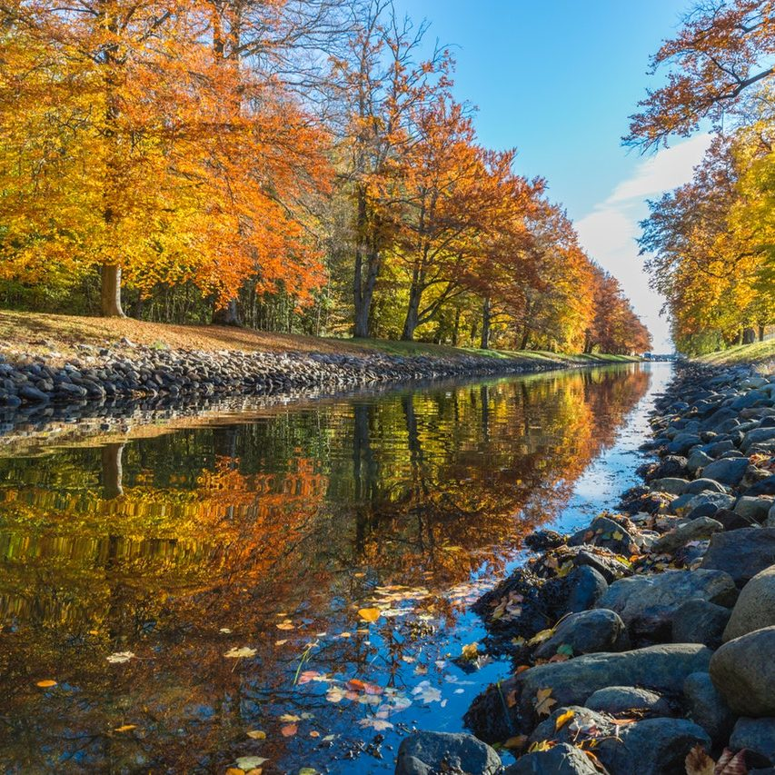 a wide clear straight riverbed meanders along a trees with autumnal orange leaves