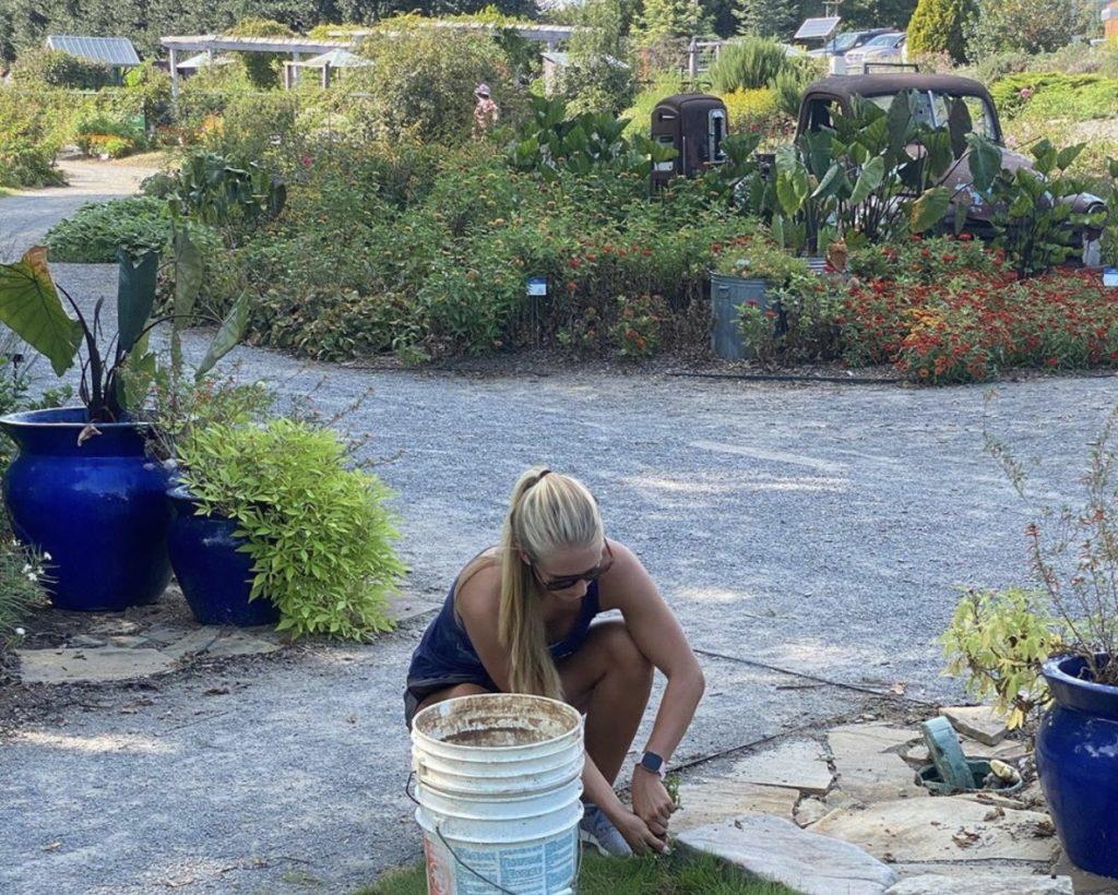 Devon Carroll weeds the GSA's Adopt-A-Spot in UT Gardens