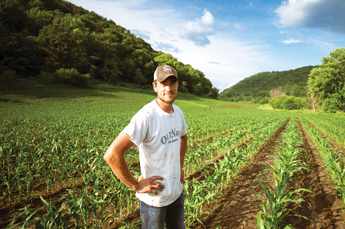 A man proudly stands in front of his young corn crop