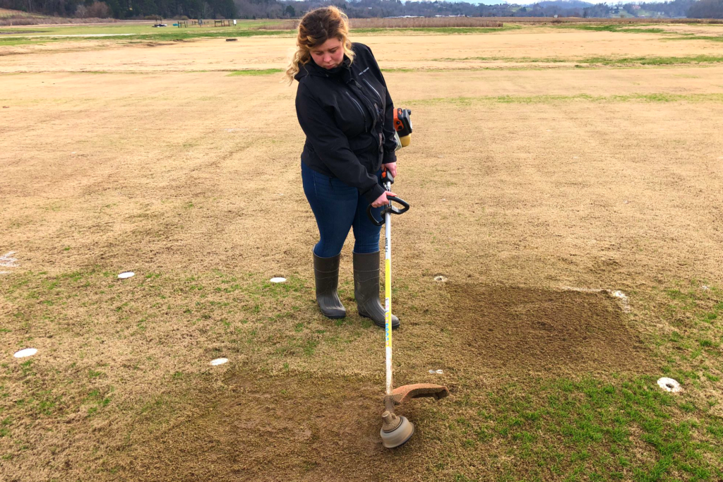 Dallas Taylor uses a grass trimmer to manage plots at the East Tennessee Research and Education Center